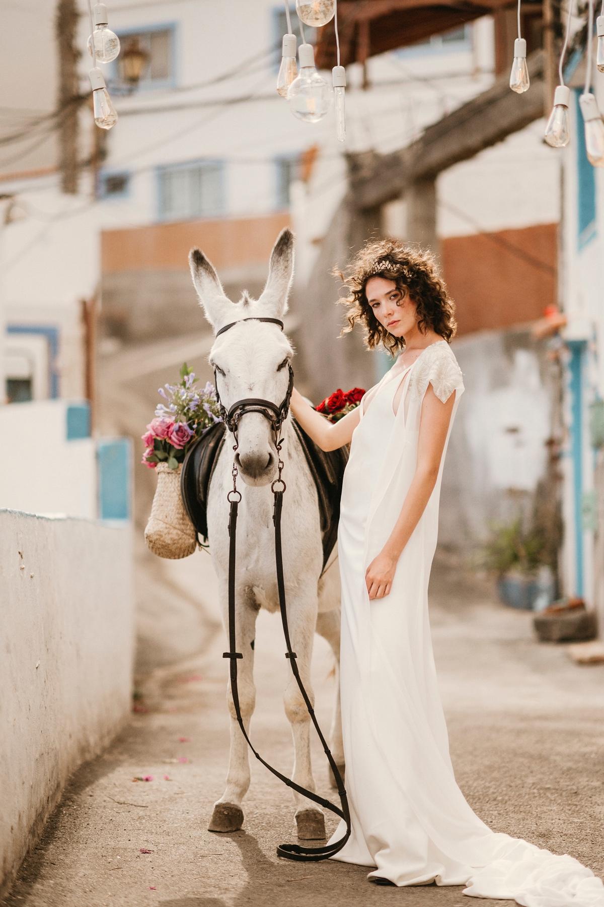 novia con burro